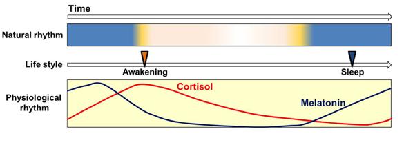 how to fall asleep without melatonin